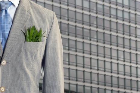 Green Economy, photo Philippe Put